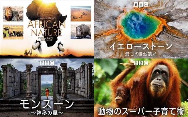 海外ドラマ,ドキュメンタリー,自然,動物